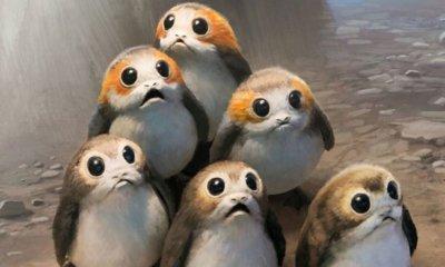 Star Wars: Os Últimos Jedi e A Forma da Água recebem o 'Oscar' da causa animal