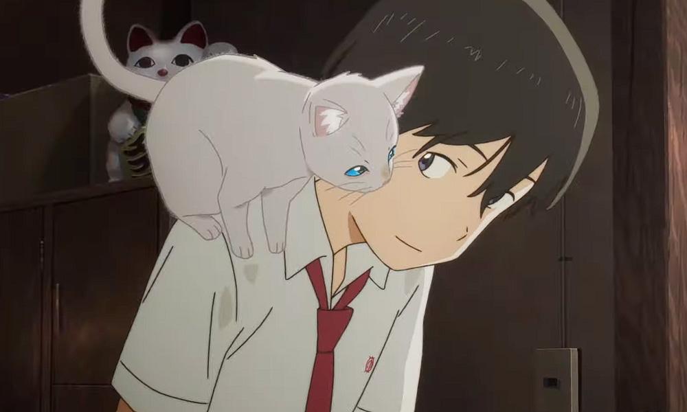 Nakitai Watashi wa Neko o Kaburu será lançado diretamente na Netflix